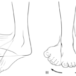 Bevegelser foten